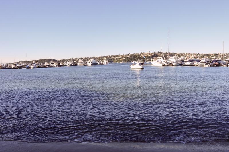 Rose Bay 3